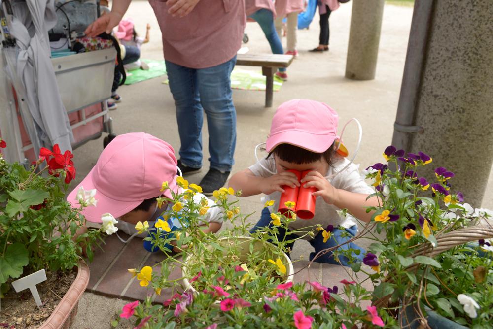 双眼鏡でお花を覗いているお子さんたちの写真
