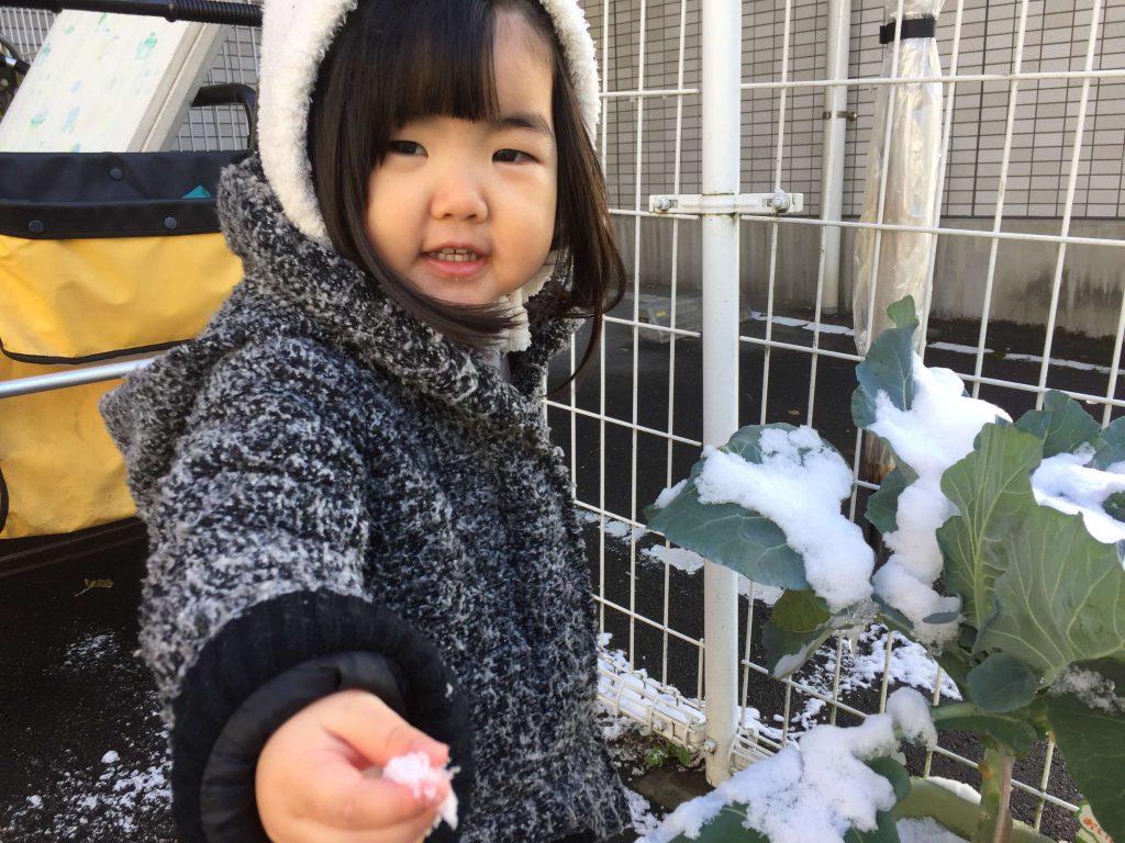 雪を見て喜ぶお子さん