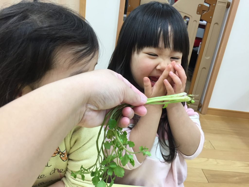 七草の香りに喜ぶお子さん